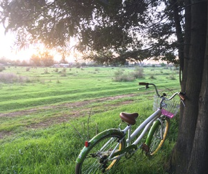 bike, bycicle, and nature image