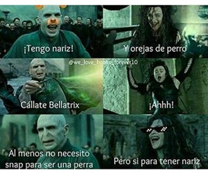 harrypotter, meme, and perra image