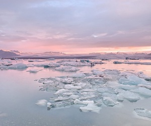 ice, pink, and water image