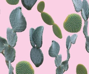cactus, girl, and pink image