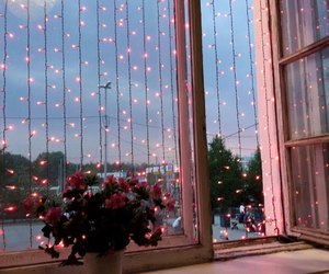 flowers, lights, and pink image