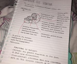 biology, notes, and help image