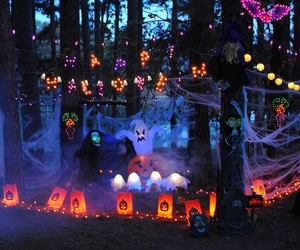 decorations, Halloween, and forest image