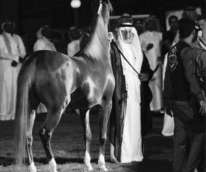 animals, arab, and black and white image