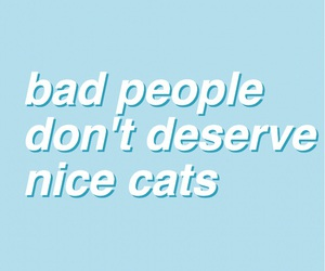 aesthetic, cats, and mine image