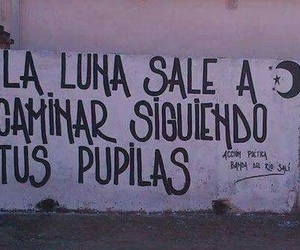 calle 13 and accion poetica image