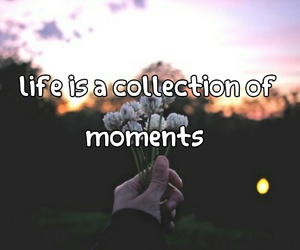 life, moments, and words image