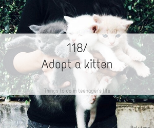 adopt, clothes, and girl image