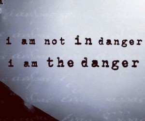 quote danger love image