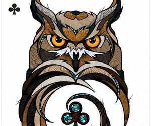brown, owl, and cute image