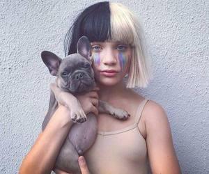 french bulldog, maddie ziegler, and ️sia image