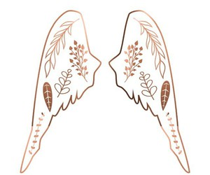 wallpaper, gold, and wings image