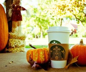 starbucks, fall, and Halloween image