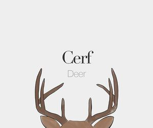 deer, french, and language image