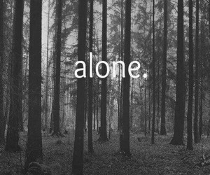 alone, leaves, and sad image