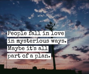 fall, quote, and love+ image