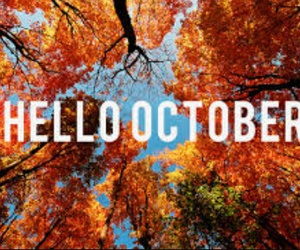 cold, hello, and autumn image