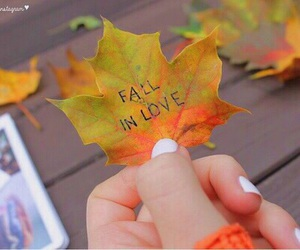 fall, autumn, and tumblr image