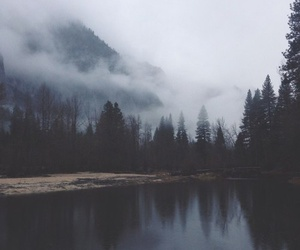 lake and trees image