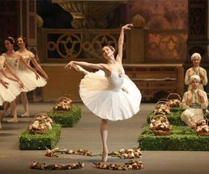 ballet, russian, and bolshoi image