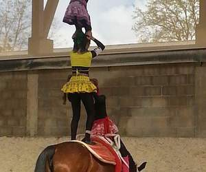 horse, passion, and vaulting image