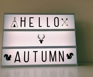 autumn, october, and lightbox image