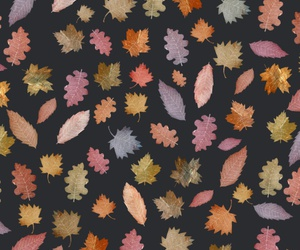 background, leaves, and october image