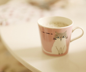cup, cat, and pastel image