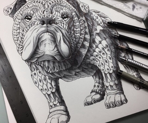 dog, drawing, and draw image