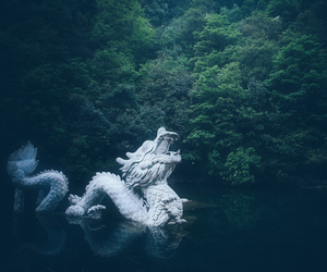 dragon, china, and green image