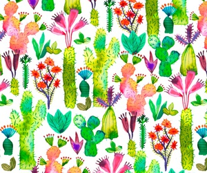 background, cactus, and plants image
