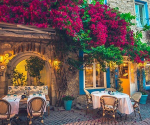 restaurant, flowers, and travel image