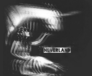 black and white, dark, and neverland image