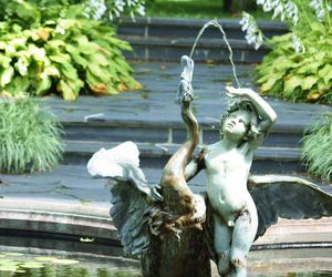 fountain, spray, and garden image