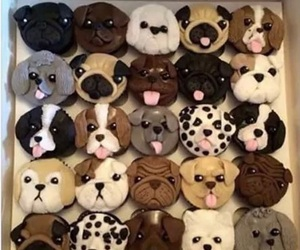 dog and cupcakes image