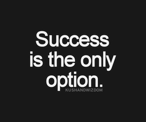 success, quotes, and option image