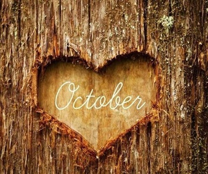 october, autumn, and heart image