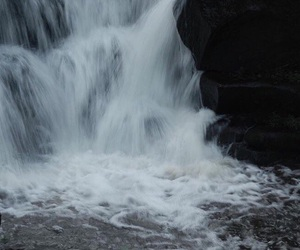 grunge, nature, and water image