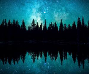 aesthetic, nature, and stars image
