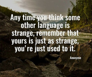 languages, quotes, and strange image