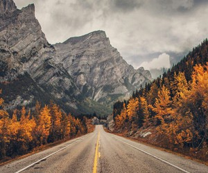 fall, mountains, and autumn image