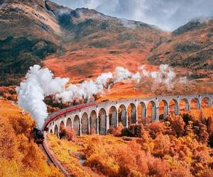 autumn, fall, and train image