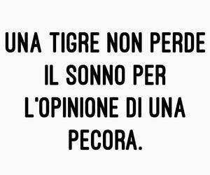 tigre, pecora, and frasi italiane image