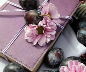 book and plum image