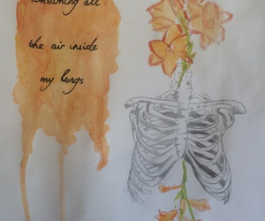 Lyrics, art, and tumblr image