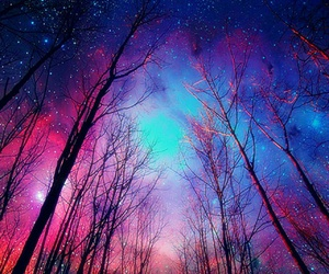 forest galaxy image