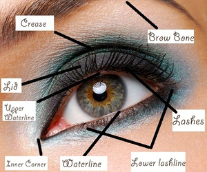crease, lashes, and makeup image