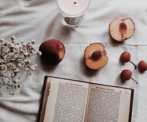 book, indie, and peach image
