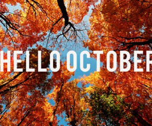 autumn, fashion, and gif image