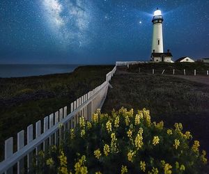 california, flowers, and lighthouse image